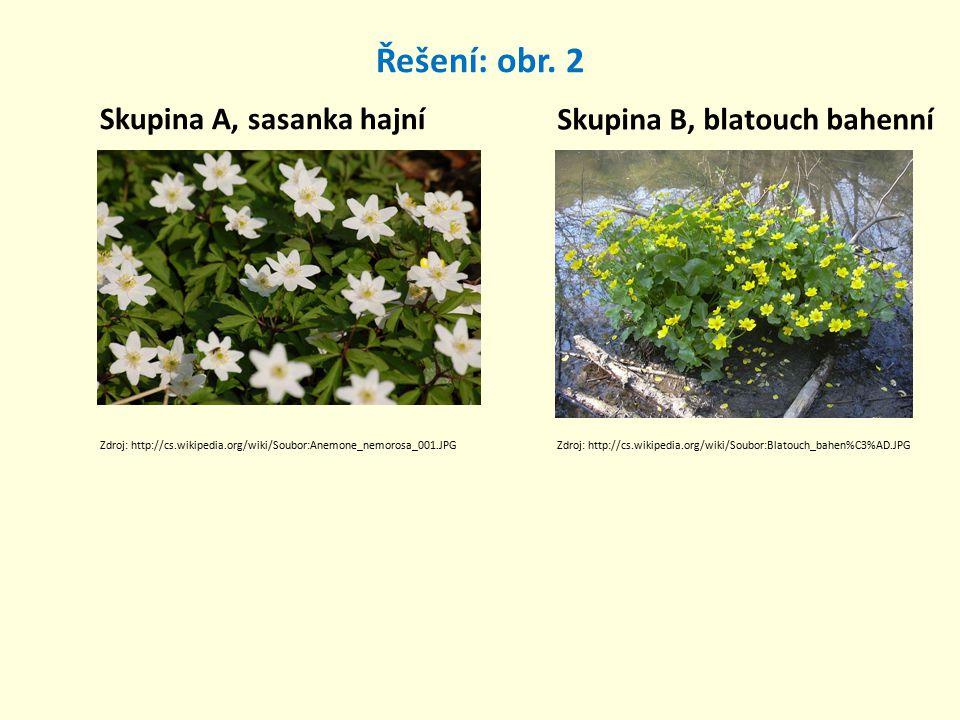 Řešení: obr. 2 Skupina A, sasanka hajní Skupina B, blatouch bahenní Zdroj: http://cs.wikipedia.org/wiki/Soubor:Anemone_nemorosa_001.JPGZdroj: http://c