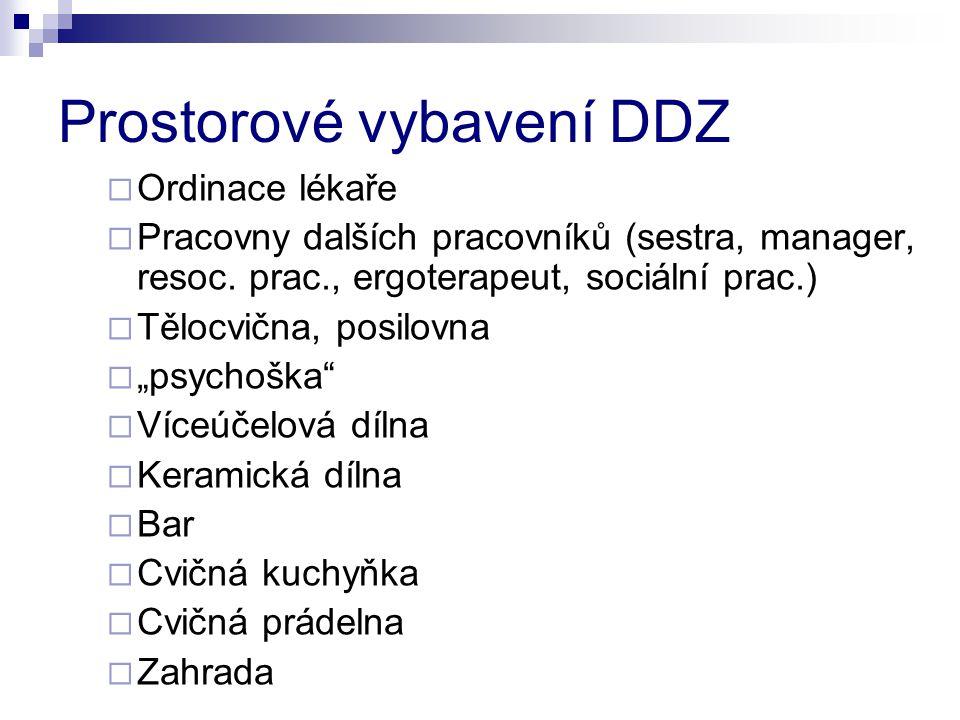 Prostorové vybavení DDZ  Ordinace lékaře  Pracovny dalších pracovníků (sestra, manager, resoc. prac., ergoterapeut, sociální prac.)  Tělocvična, po
