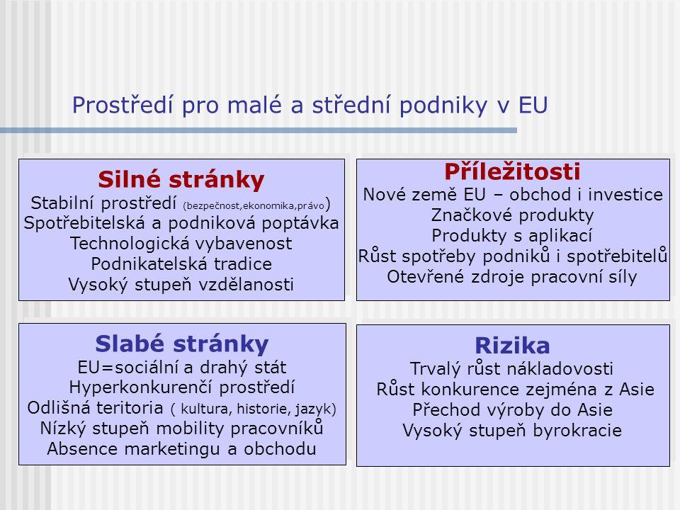 Prostředí pro malé a střední podniky v EU Silné stránky Stabilní prostředí (bezpečnost,ekonomika,právo ) Spotřebitelská a podniková poptávka Technolog