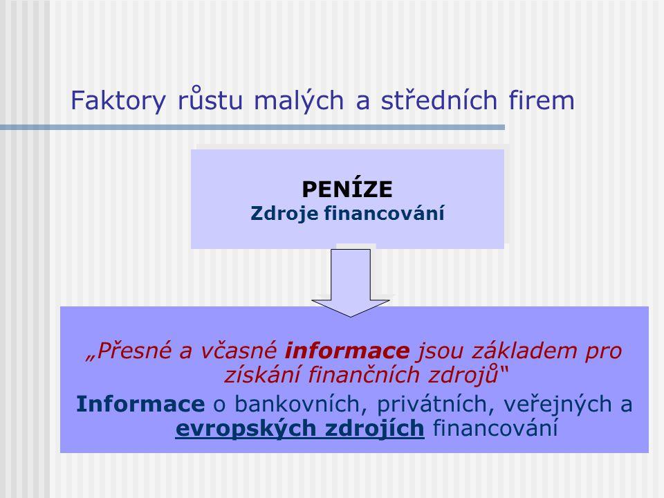 """Faktory růstu malých a středních firem """"Přesné a včasné informace jsou základem pro získání finančních zdrojů"""" Informace o bankovních, privátních, veř"""