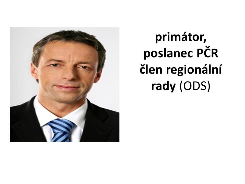 primátor, poslanec PČR člen regionální rady (ODS)