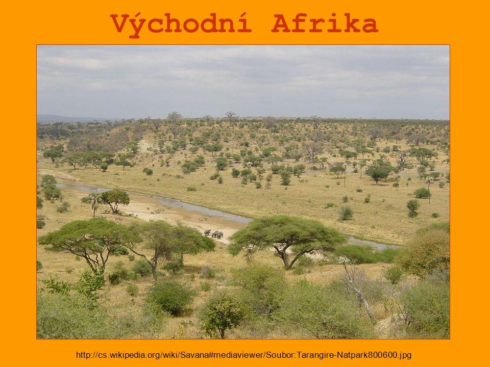 Východní Afrika http://cs.wikipedia.org/wiki/Savana#mediaviewer/Soubor:Tarangire-Natpark800600.jpg