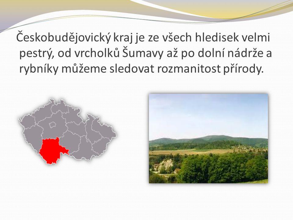 Českobudějovický kraj je ze všech hledisek velmi pestrý, od vrcholků Šumavy až po dolní nádrže a rybníky můžeme sledovat rozmanitost přírody.