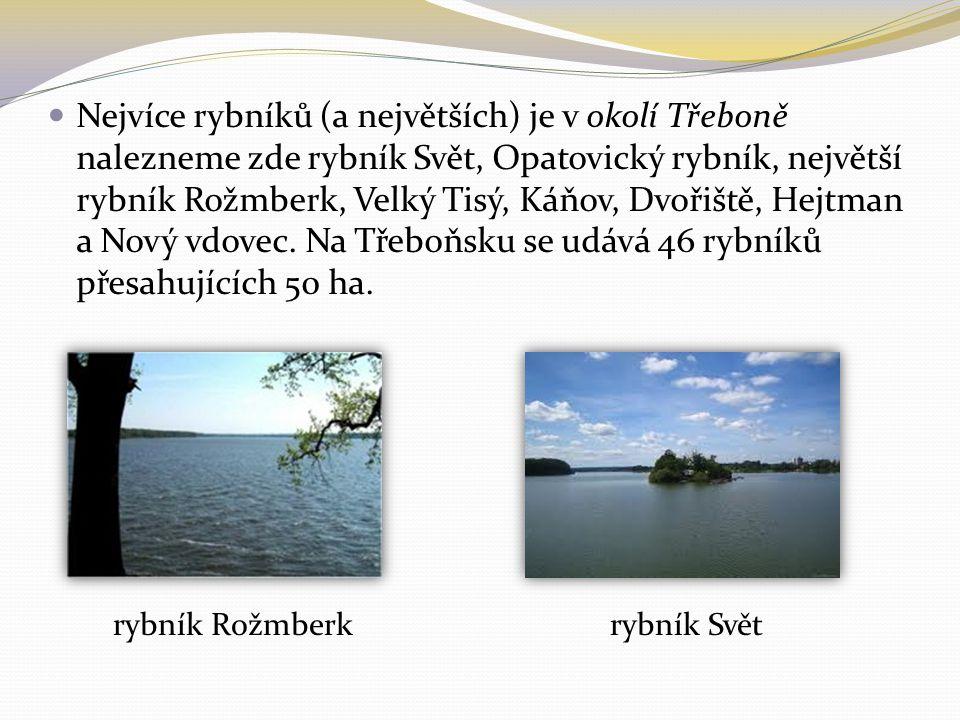 Nejvíce rybníků (a největších) je v okolí Třeboně nalezneme zde rybník Svět, Opatovický rybník, největší rybník Rožmberk, Velký Tisý, Káňov, Dvořiště,
