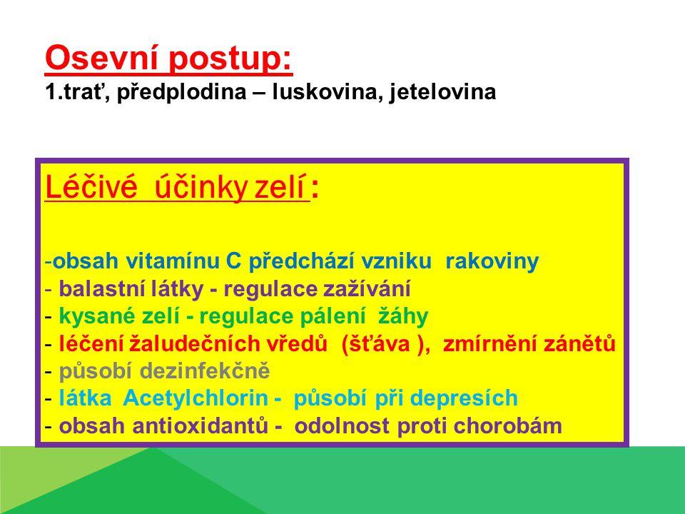 Léčivé účinky zelí : -obsah vitamínu C předchází vzniku rakoviny - balastní látky - regulace zažívání - kysané zelí - regulace pálení žáhy - léčení žaludečních vředů (šťáva ), zmírnění zánětů - působí dezinfekčně - látka Acetylchlorin - působí při depresích - obsah antioxidantů - odolnost proti chorobám Osevní postup: 1.trať, předplodina – luskovina, jetelovina