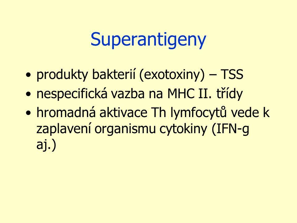 Superantigeny produkty bakterií (exotoxiny) – TSS nespecifická vazba na MHC II.