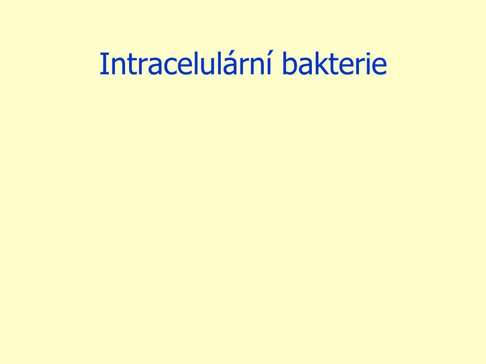 Intracelulární bakterie