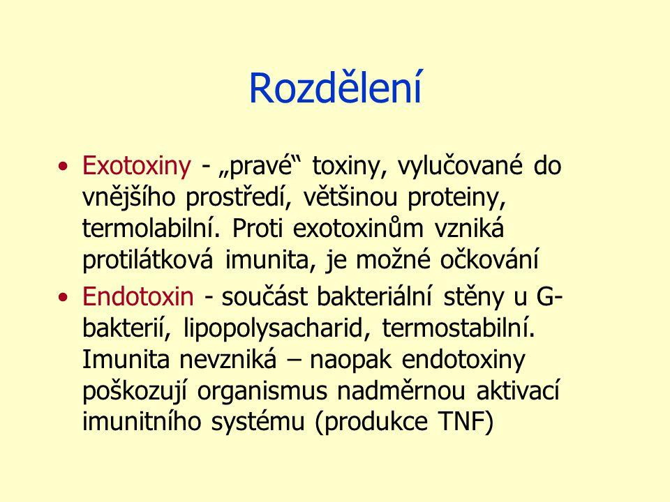 """Rozdělení Exotoxiny - """"pravé toxiny, vylučované do vnějšího prostředí, většinou proteiny, termolabilní."""