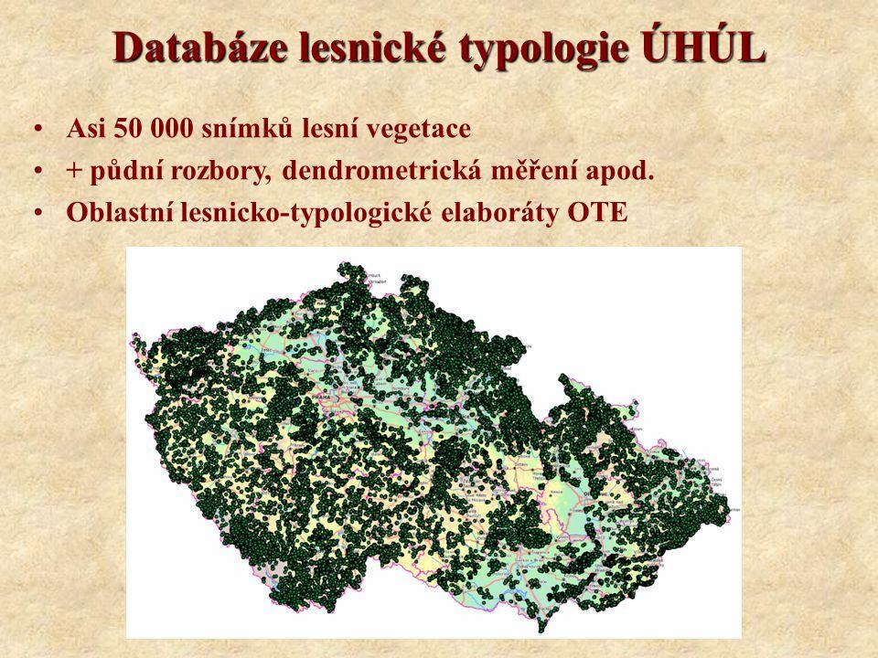 Databáze lesnické typologie ÚHÚL Asi 50 000 snímků lesní vegetace + půdní rozbory, dendrometrická měření apod.