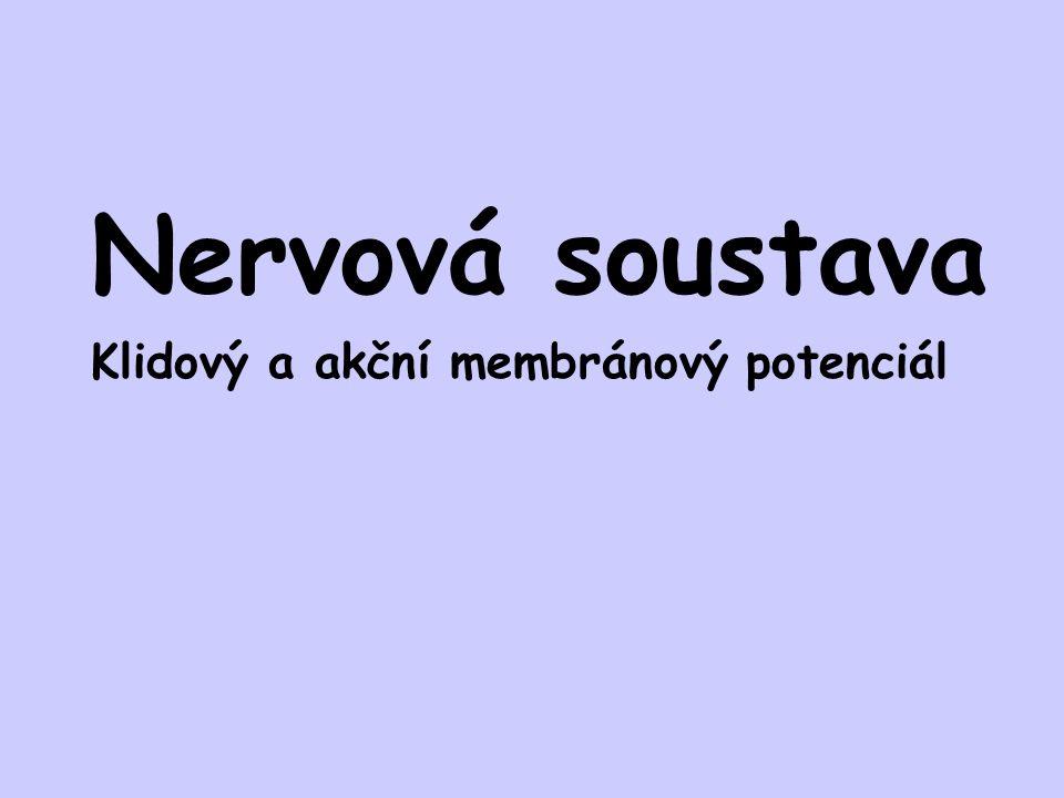 Nervová soustava Klidový a akční membránový potenciál