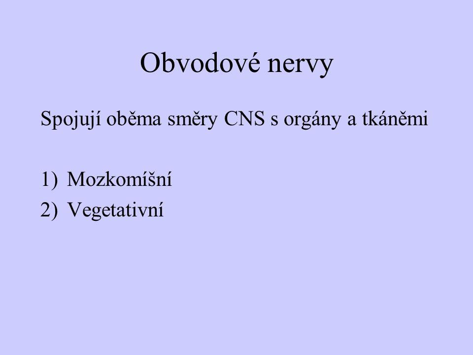 Obvodové nervy Spojují oběma směry CNS s orgány a tkáněmi 1)Mozkomíšní 2)Vegetativní
