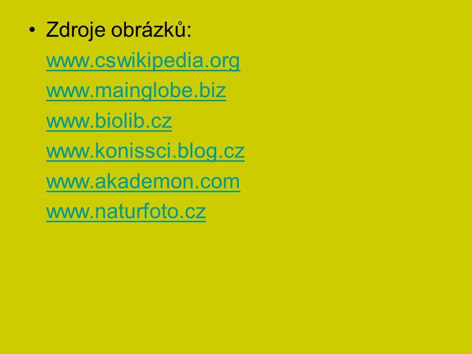 Zdroje obrázků: www.cswikipedia.org www.mainglobe.biz www.biolib.cz www.konissci.blog.cz www.akademon.com www.naturfoto.cz