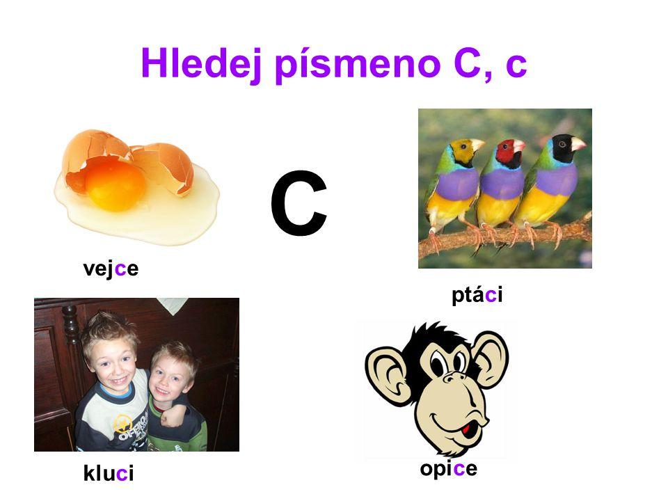 Hledej písmeno C, c C vejce ptáci kluci opice