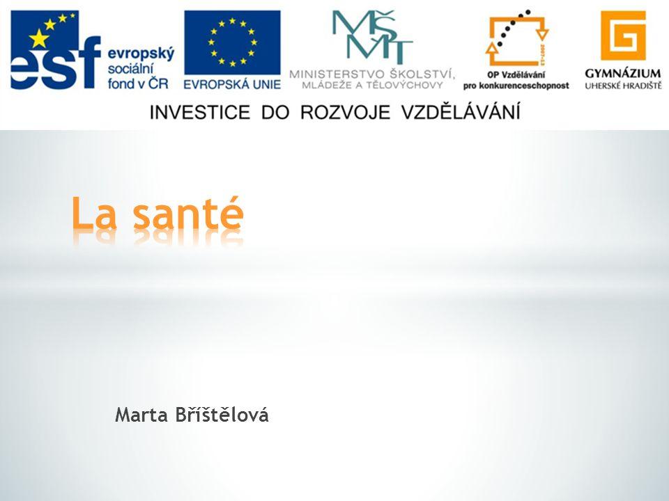 Marta Bříštělová