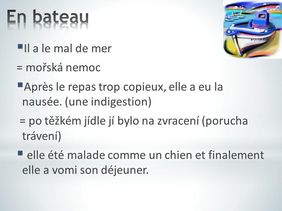  Il a le mal de mer = mořská nemoc  Après le repas trop copieux, elle a eu la nausée. (une indigestion) = po těžkém jídle jí bylo na zvracení (poruc