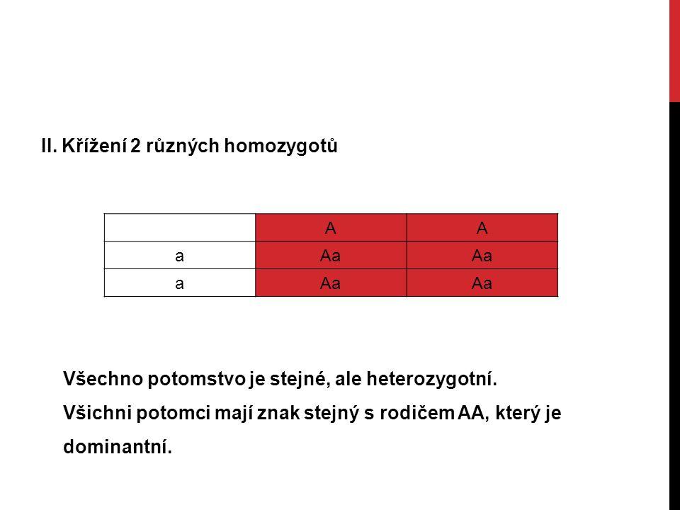 II. Křížení 2 různých homozygotů AA aAa a Všechno potomstvo je stejné, ale heterozygotní.