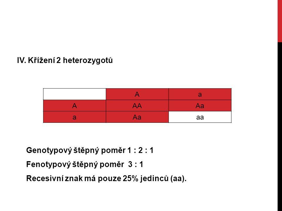 IV. Křížení 2 heterozygotů Aa AAAAa a aa Genotypový štěpný poměr 1 : 2 : 1 Fenotypový štěpný poměr 3 : 1 Recesivní znak má pouze 25% jedinců (aa).
