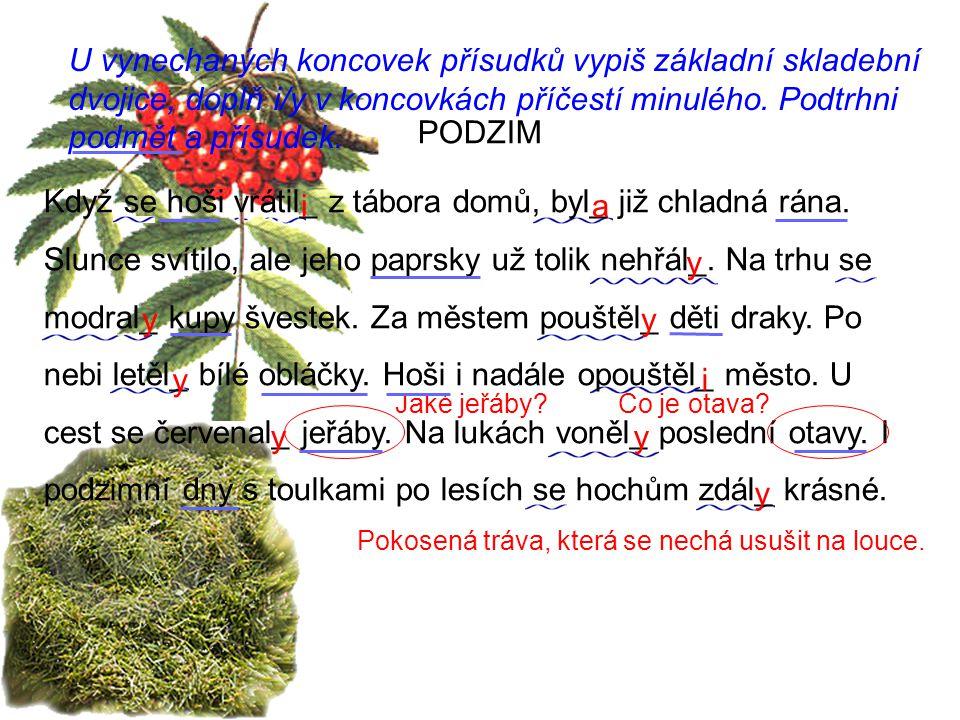 Použitá literatura: Český jazyk pro 4.ročník ZŠ, V.