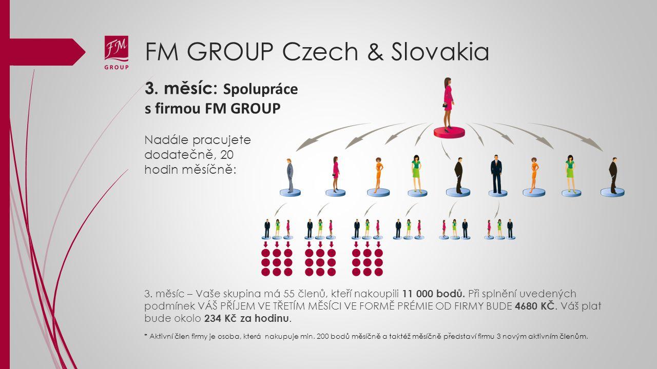 FM GROUP Czech & Slovakia 3. měsíc: Spolupráce s firmou FM GROUP Nadále pracujete dodatečně, 20 hodin měsíčně: 3. měsíc – Vaše skupina má 55 členů, kt