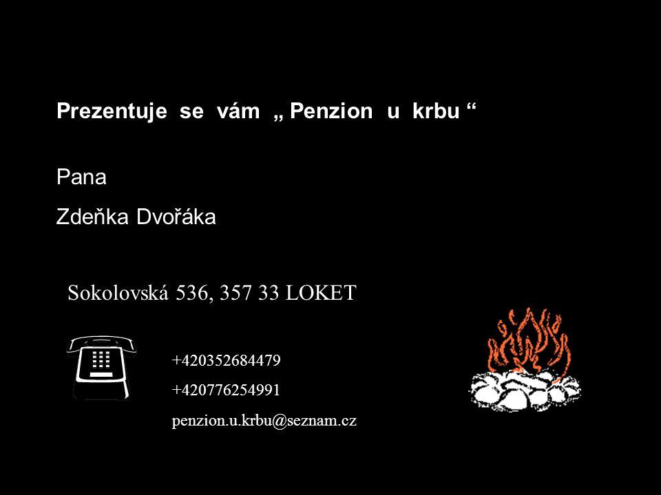 """Prezentuje se vám """" Penzion u krbu Pana Zdeňka Dvořáka Sokolovská 536, 357 33 LOKET +420352684479 +420776254991 penzion.u.krbu@seznam.cz"""