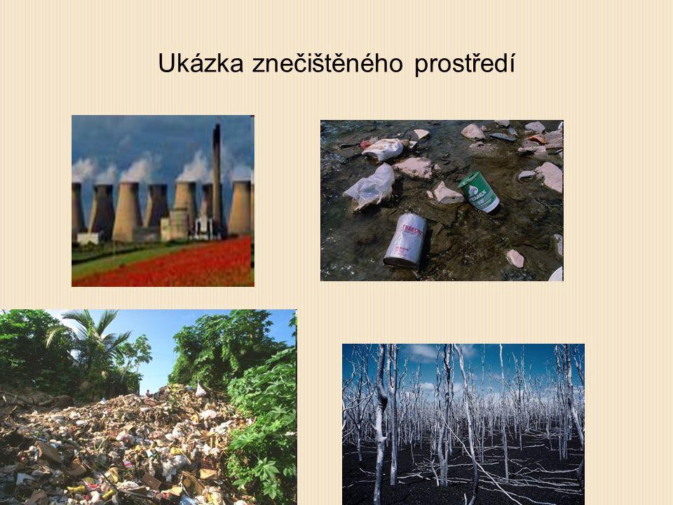 Ukázka znečištěného prostředí