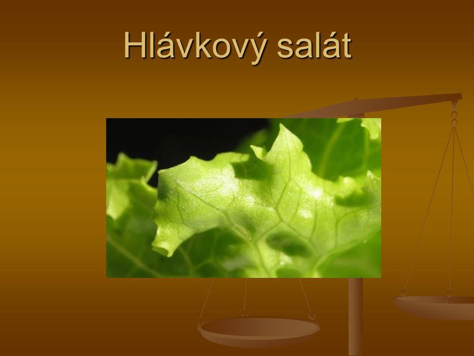 Nový druhy hlávkového salátu Poslední době se k nám dostávají nové druhy hlávkového salátu.