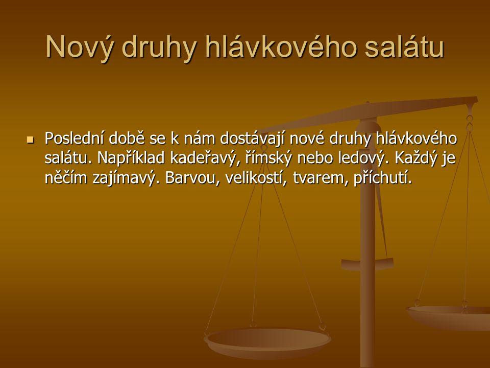 Nový druhy hlávkového salátu Poslední době se k nám dostávají nové druhy hlávkového salátu. Například kadeřavý, římský nebo ledový. Každý je něčím zaj