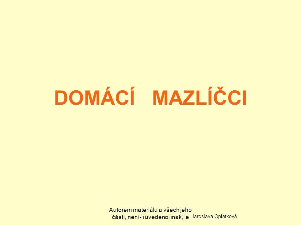 Autorem materiálu a všech jeho částí, není-li uvedeno jinak, je DOMÁCÍ MAZLÍČCI Jaroslava Oplatková.