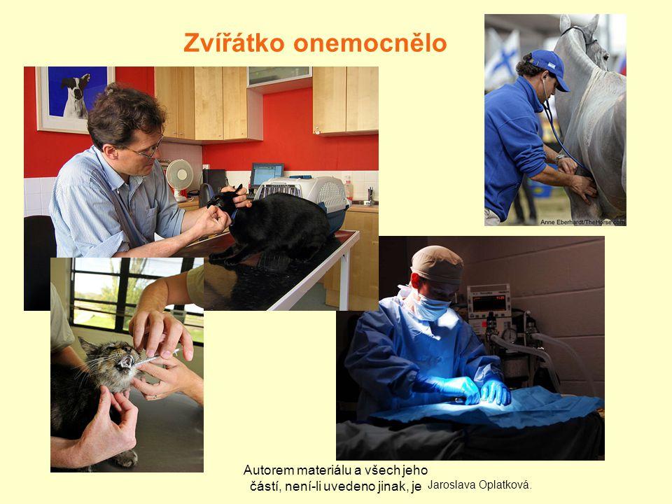 Autorem materiálu a všech jeho částí, není-li uvedeno jinak, je Zvířátko onemocnělo Jaroslava Oplatková.