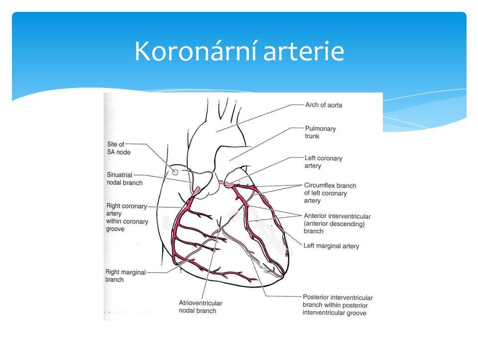 Co je to ischemická choroba srdeční.