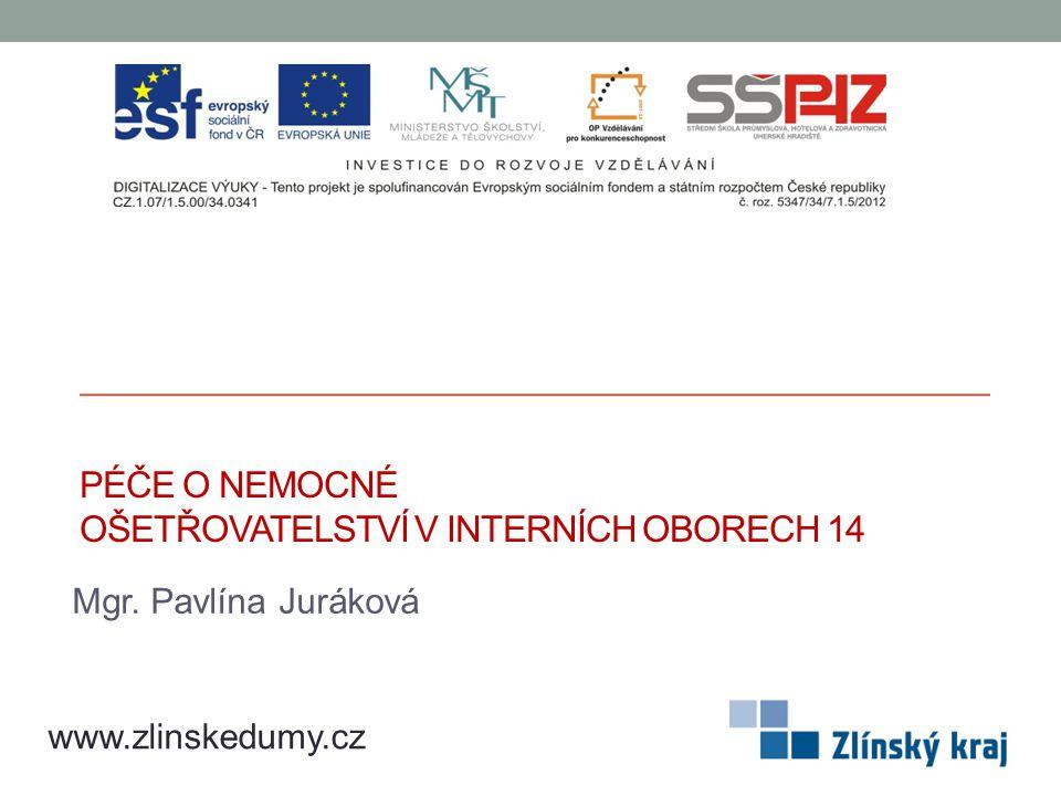 PÉČE O NEMOCNÉ OŠETŘOVATELSTVÍ V INTERNÍCH OBORECH 14 Mgr. Pavlína Juráková www.zlinskedumy.cz