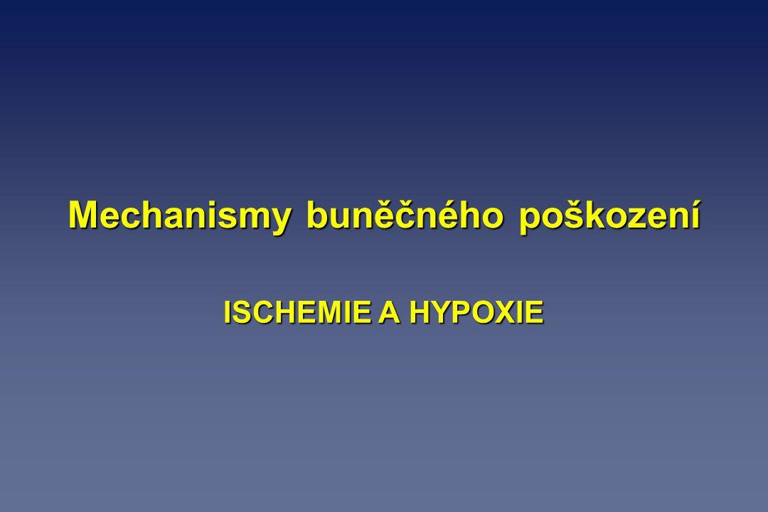 Mechanismy buněčného poškození ISCHEMIE A HYPOXIE