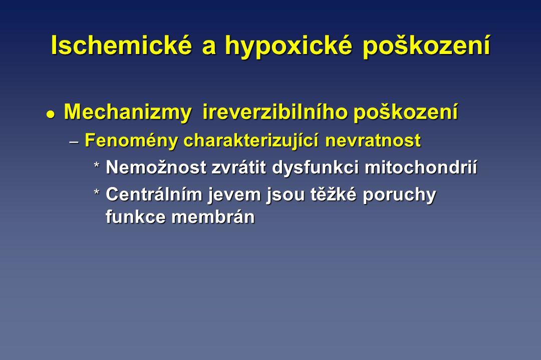 Ischemické a hypoxické poškození l Mechanizmy ireverzibilního poškození – Fenomény charakterizující nevratnost * Nemožnost zvrátit dysfunkci mitochond