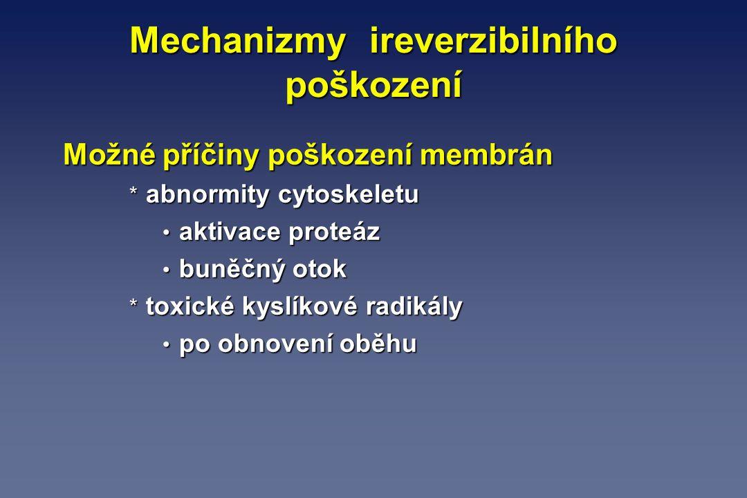 Mechanizmy ireverzibilního poškození Možné příčiny poškození membrán * abnormity cytoskeletu aktivace proteáz aktivace proteáz buněčný otok buněčný ot