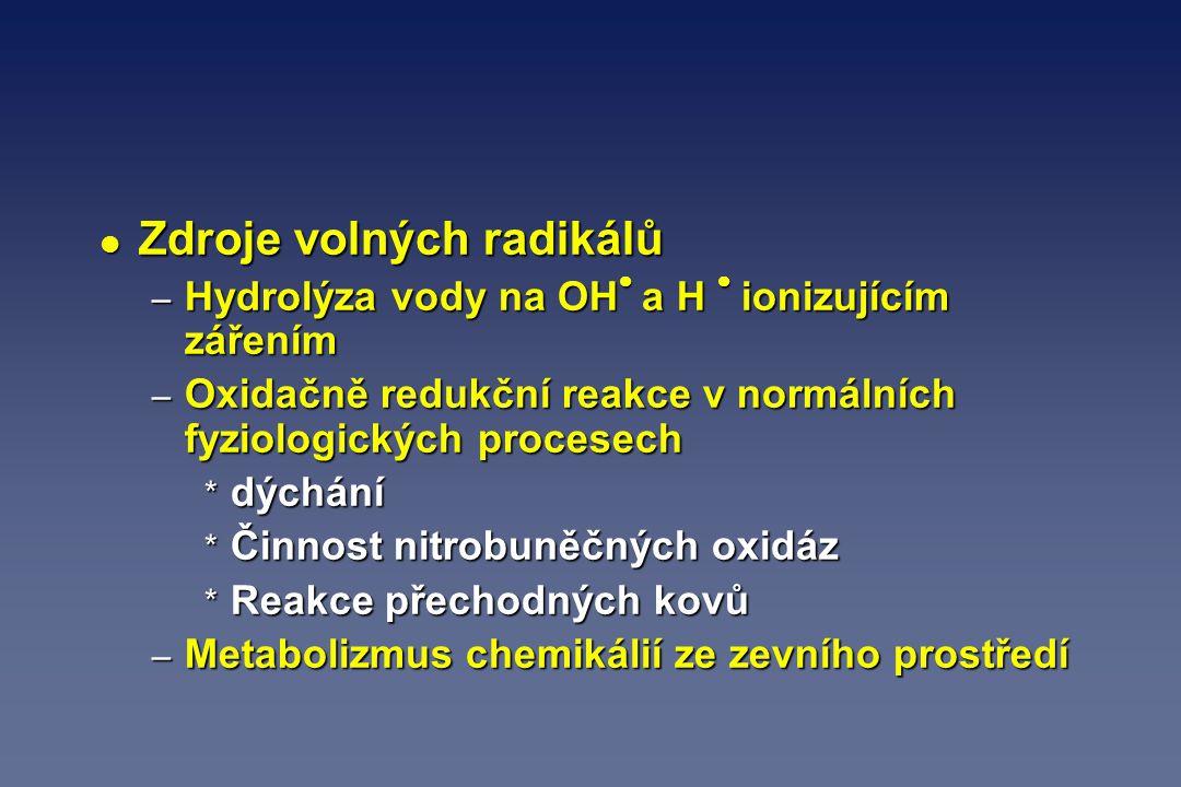 l Zdroje volných radikálů – Hydrolýza vody na OH  a H  ionizujícím zářením – Oxidačně redukční reakce v normálních fyziologických procesech * dýchán