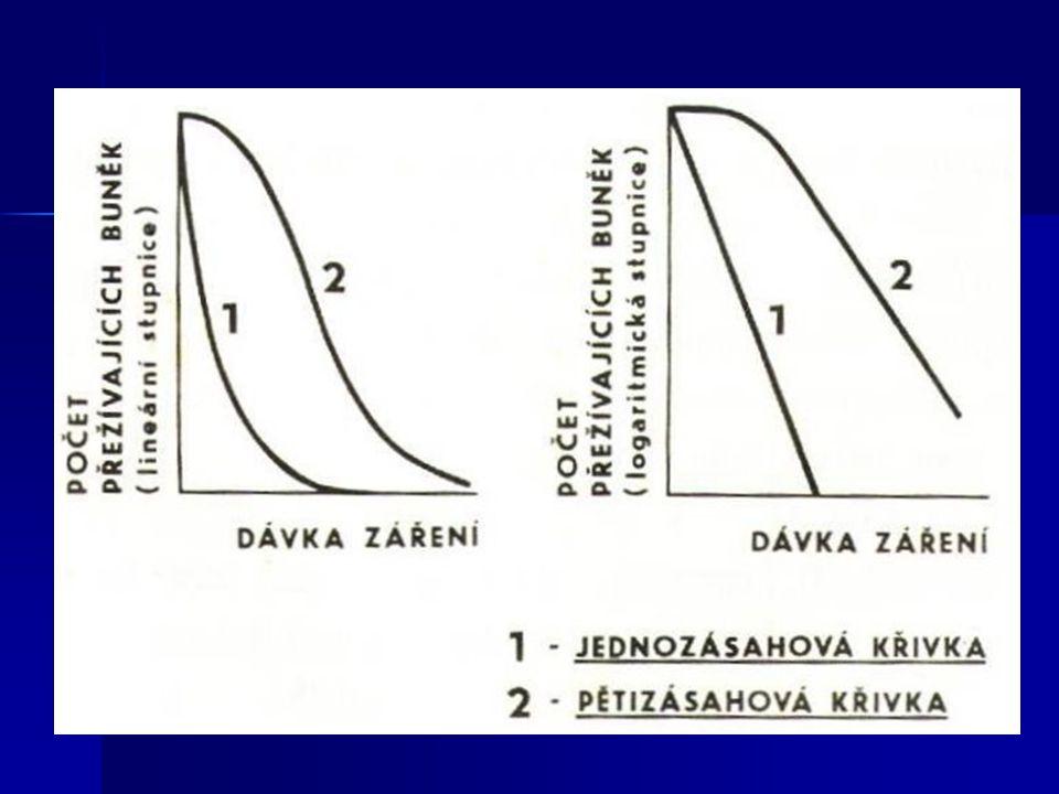 2.Teorie nepřímého účinku (radikálová) Záření vyvolává přímo či nepřímo  tzv.