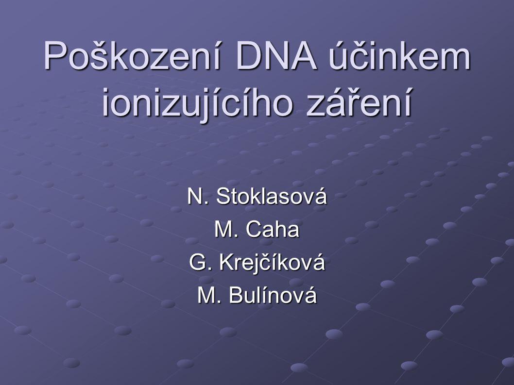 Poškození DNA účinkem ionizujícího záření N. Stoklasová M. Caha G. Krejčíková M. Bulínová
