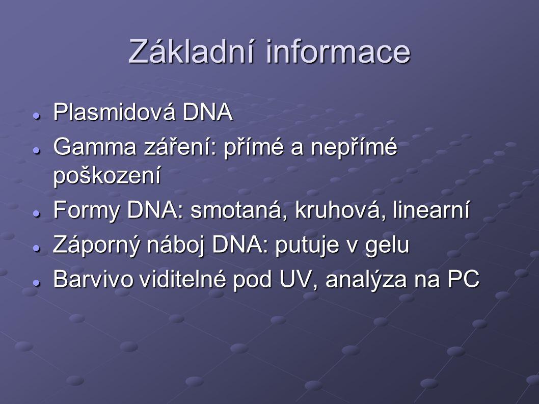 Základní informace Plasmidová DNA Plasmidová DNA Gamma záření: přímé a nepřímé poškození Gamma záření: přímé a nepřímé poškození Formy DNA: smotaná, kruhová, linearní Formy DNA: smotaná, kruhová, linearní Záporný náboj DNA: putuje v gelu Záporný náboj DNA: putuje v gelu Barvivo viditelné pod UV, analýza na PC Barvivo viditelné pod UV, analýza na PC