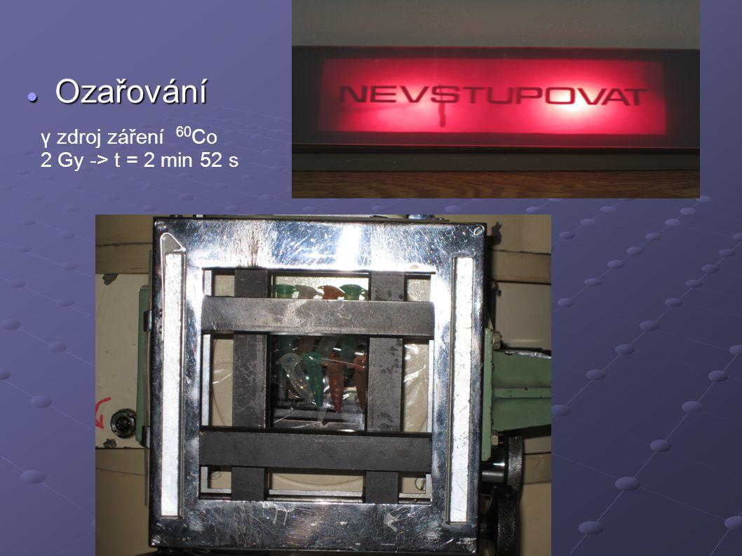 Elektroforéza a zobrazení gelu Elektroforéza a zobrazení gelu V (nanášecí pufr) = 2 μl U = 100 V t = 90 min
