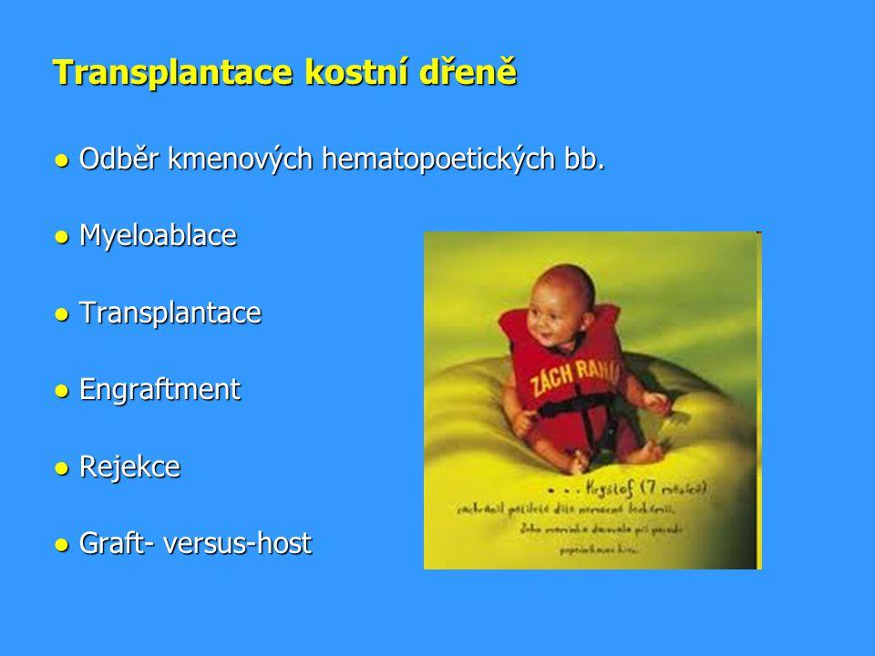 Transplantace kostní dřeně ● Odběr kmenových hematopoetických bb.