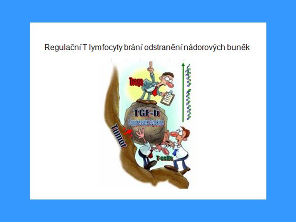 Imunopatologická reakce typu II - příklady Transfúzní reakce při podání inkopatibilní krve:Transfúzní reakce při podání inkopatibilní krve: protilátky se naváží na antigeny erytrocytů → aktivace klasické cesty komplementu → lýza krvinek protilátky se naváží na antigeny erytrocytů → aktivace klasické cesty komplementu → lýza krvinek Hemolytická nemoc novorozenců:Hemolytická nemoc novorozenců: způsobena protilátkami proti antigenu RhD způsobena protilátkami proti antigenu RhD
