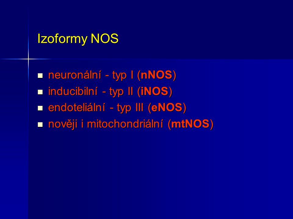 Izoformy NOS neuronální - typ I (nNOS) neuronální - typ I (nNOS) inducibilní - typ II (iNOS) inducibilní - typ II (iNOS) endoteliální - typ III (eNOS)