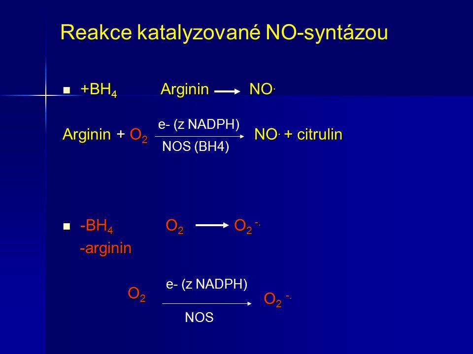 Reakce katalyzované NO-syntázou +BH 4 Arginin NO. +BH 4 Arginin NO. Arginin + O 2 NO. + citrulin -BH 4 O 2 O 2 -. -BH 4 O 2 O 2 -. -arginin -arginin O