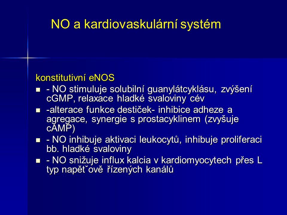 konstitutivní eNOS - NO stimuluje solubilní guanylátcyklásu, zvýšení cGMP, relaxace hladké svaloviny cév - NO stimuluje solubilní guanylátcyklásu, zvý