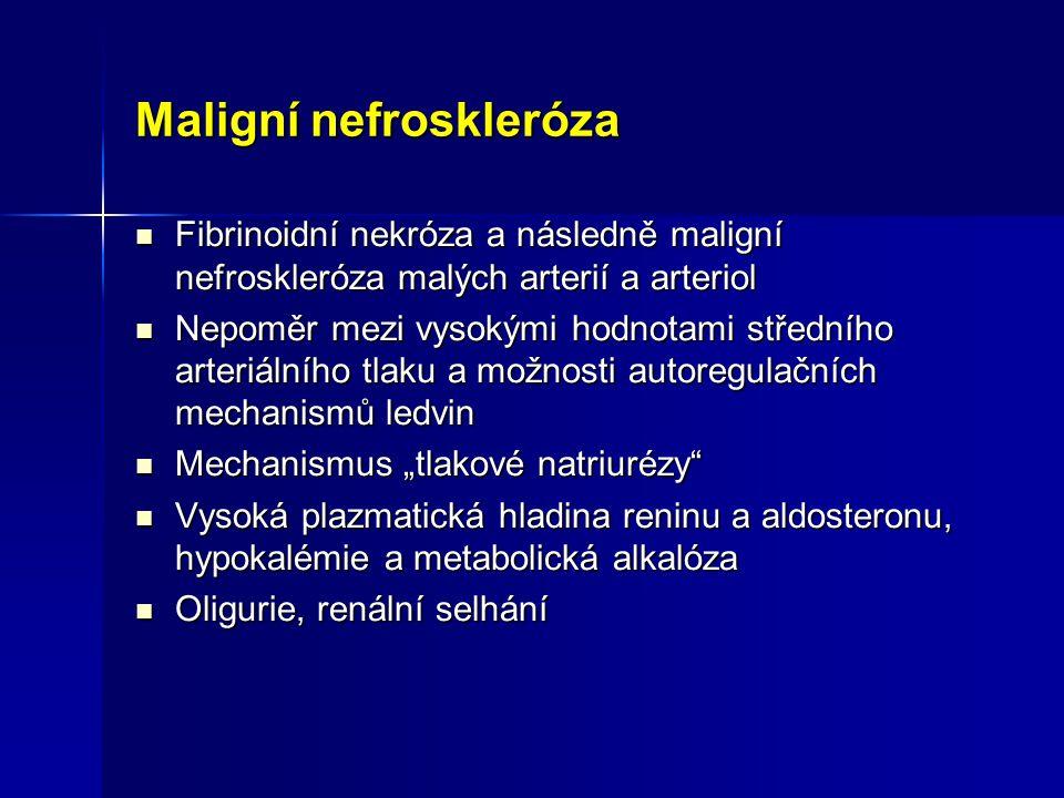 Maligní nefroskleróza Fibrinoidní nekróza a následně maligní nefroskleróza malých arterií a arteriol Fibrinoidní nekróza a následně maligní nefroskler