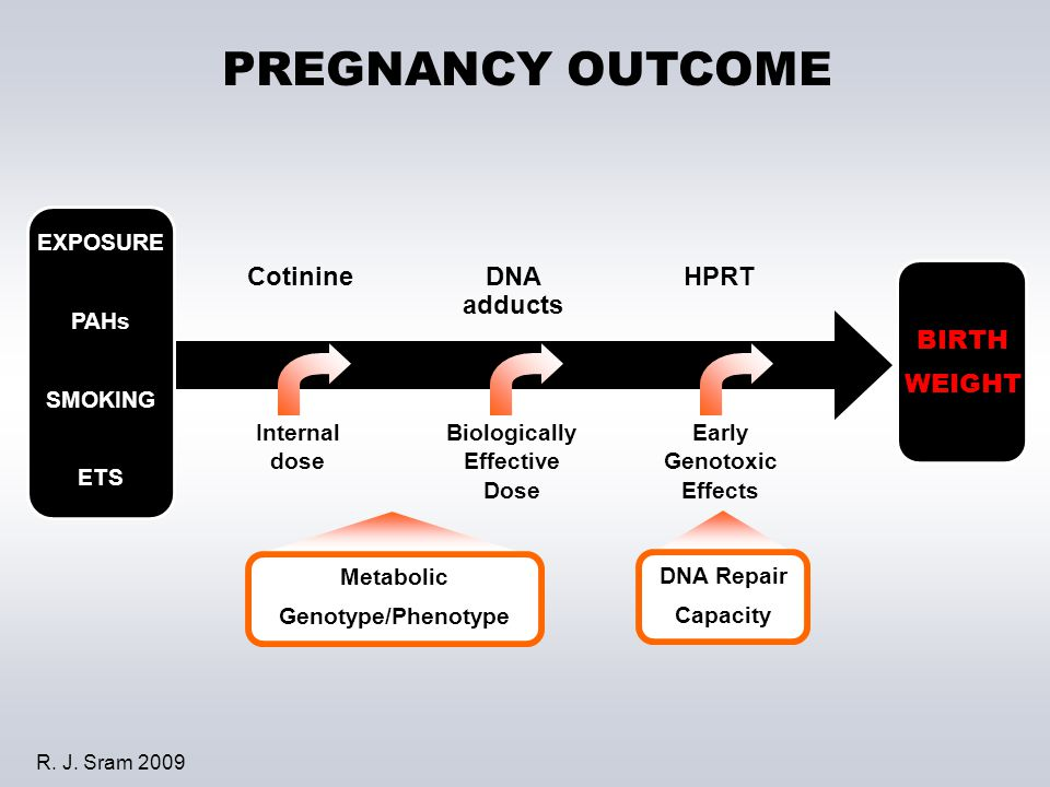 PREGNANCY OUTCOME EXPOSURE PAHs SMOKING ETS Internal dose Biologically Effective Dose Early Genotoxic Effects CotinineDNA adducts HPRT BIRTH WEIGHT Me
