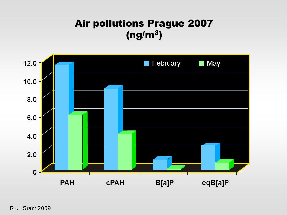 PAHcPAHB[a]P FebruaryMay eqB[a]P Air pollutions Prague 2007 (ng/m 3 ) R.