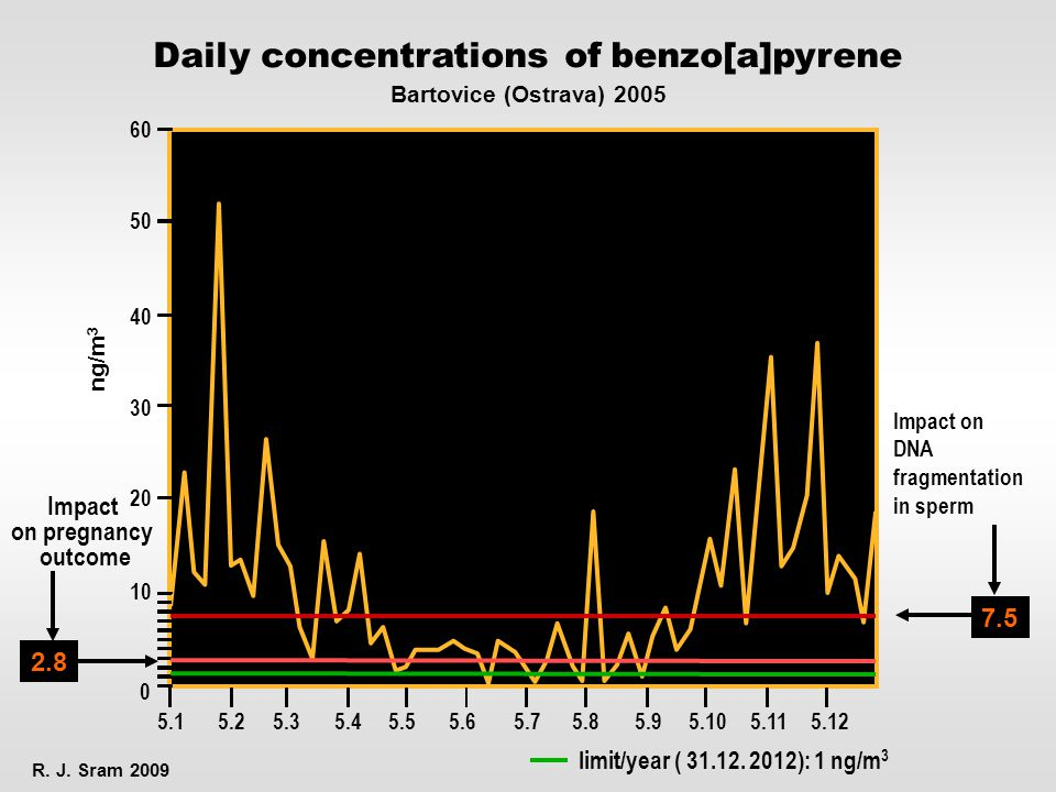 Daily concentrations of benzo[a]pyrene R. J.