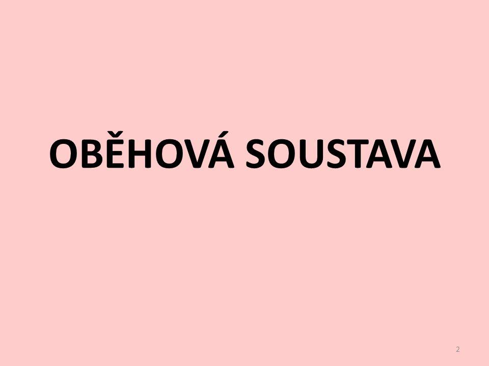 OBĚHOVÁ SOUSTAVA 2