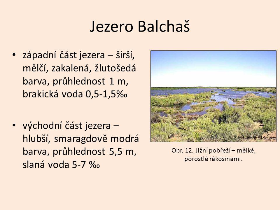 Jezero Balchaš západní část jezera – širší, mělčí, zakalená, žlutošedá barva, průhlednost 1 m, brakická voda 0,5-1,5‰ východní část jezera – hlubší, s